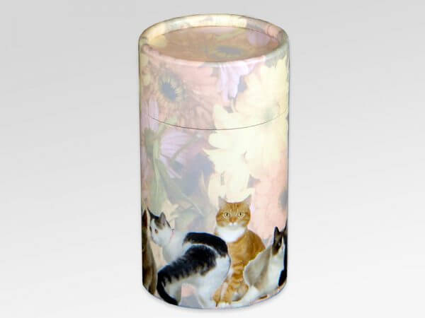 Scatter Tube Cat - Small